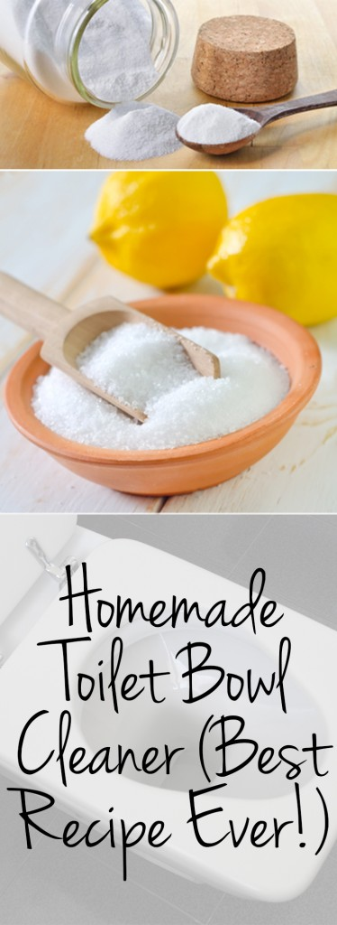 Homemade Toilet Bowl Cleaner Best Recipe Ever Wrapped