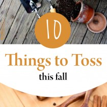 10-things-to-toss-this-fall-1