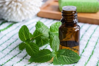 10-ways-to-clean-naturally-with-essential-oils9