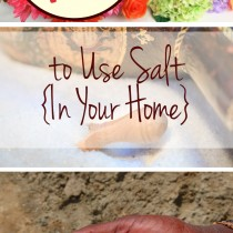 15-ways-to-use-salt-in-your-home-1