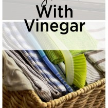 20-awesome-things-to-do-with-vinegar-1