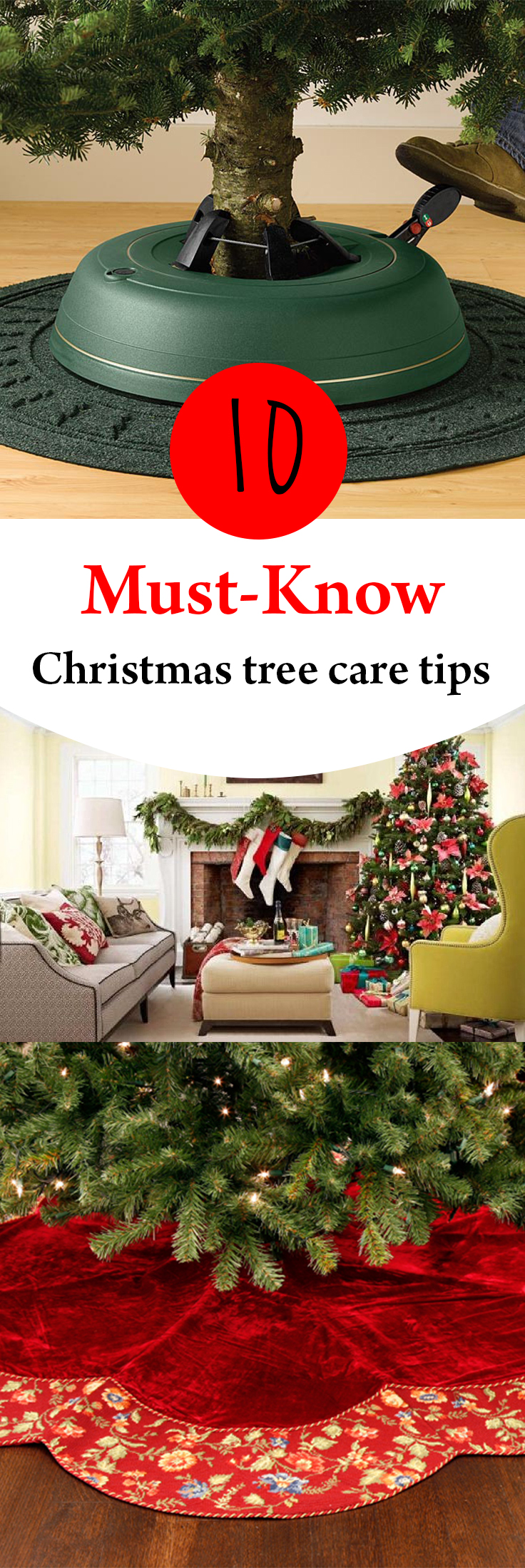 10-must-know-christmas-tree-care-tips