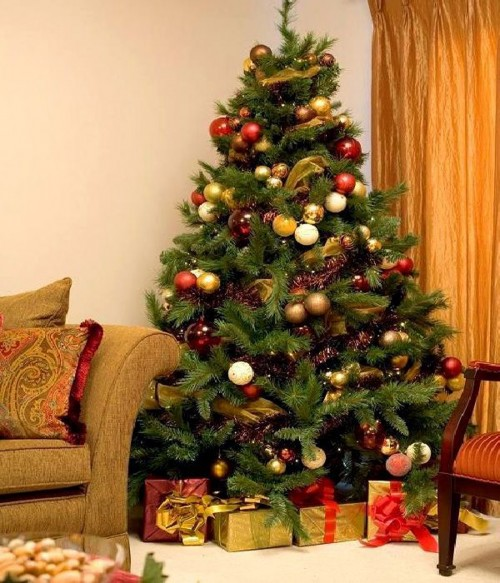 10-must-know-christmas-tree-care-tips4