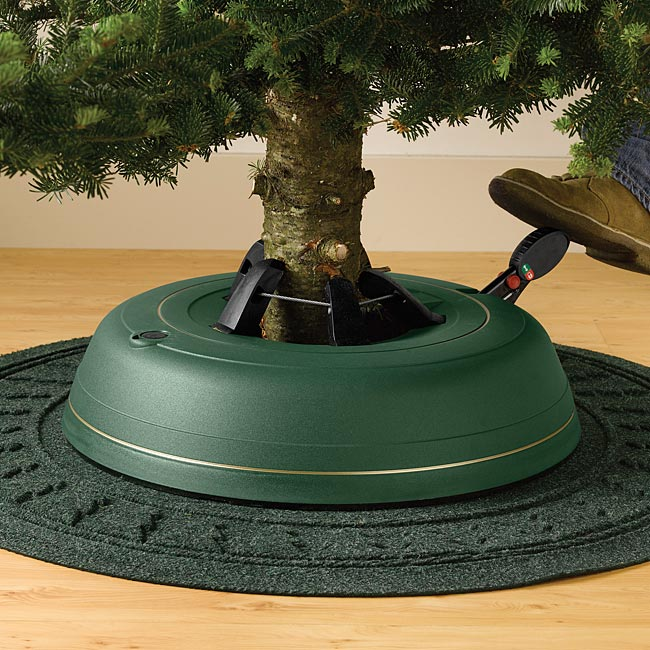 10-must-know-christmas-tree-care-tips5