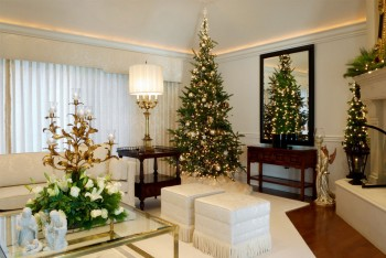 10-must-know-christmas-tree-care-tips9