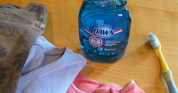 14-unique-ways-to-use-dawn-dish-soap-at-home12