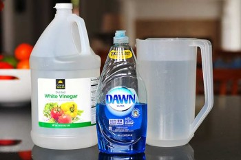 14-unique-ways-to-use-dawn-dish-soap-at-home8