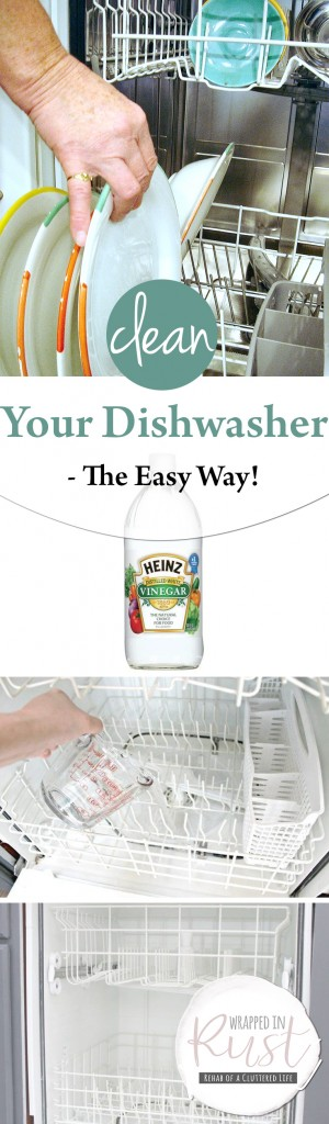How to Clean Your Dishwasher, Dishwasher Cleaning Hacks, Dishwasher Cleaning Tips, Easily Clean Your Dishwasher, How to Easily Clean Your Dishwasher, Popular Pin