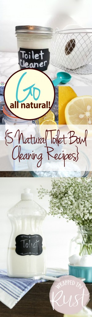 Go All Natural! {5 Natural Toilet Bowl Cleaning Recipes} Natural Cleaning Recipes, Cleaning Recipes, Cleaning Tips and Tricks, Cleaning Hacks, Homemade Cleaners, Handmade Cleaning Recipes, Homemade Cleaning Recipes, Chemical Free Cleaning Recipes