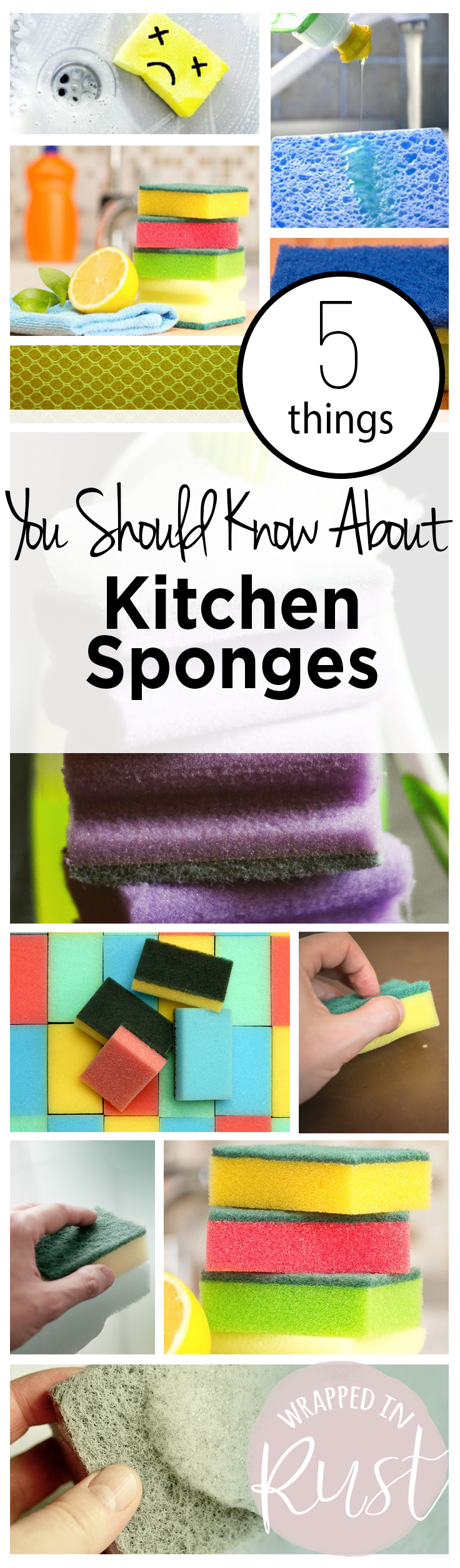 5 Things You Should Know About Kitchen Sponges