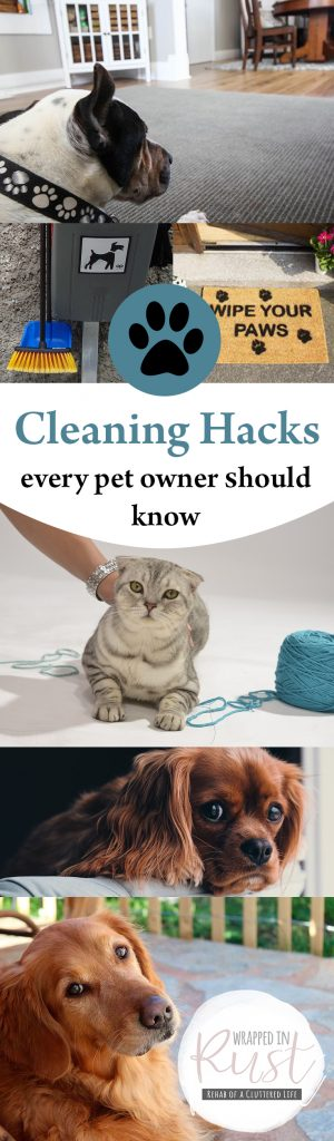 Cleaning Hacks for Pet Owners, Pet Owner Cleaning Hacks, Cleaning Hacks, Home Cleaning Hacks, How to Keep Your Home Clean With Pets, SImple Ways to Keep Your Home Clean With Pets, Popular Pin