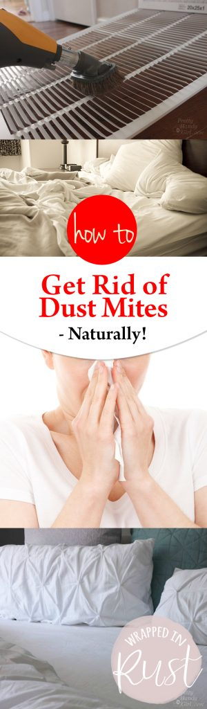 How To Get Rid Of Dust Mites Naturally Wrapped In Rust