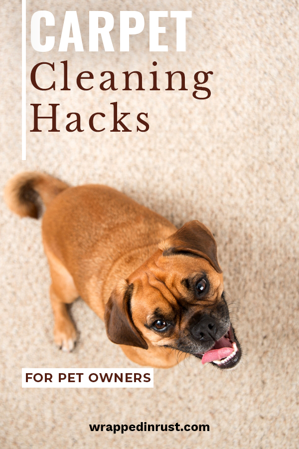 Here are some fabulous carpet cleaning hacks for pet owners that you need to know