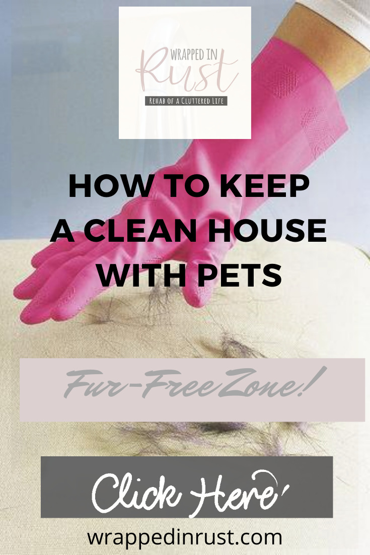 Keeping a house clean with pets can add some challenges but we have the answers. Keep reading to learn how to keep a clean house with pets without spending all day long doing it. #wrappedinrustblog #cleanwithpets #cleaningtips